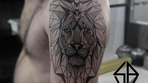 aslan-dovmesi-geometri