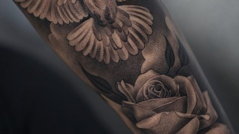 dove-tattoo-251