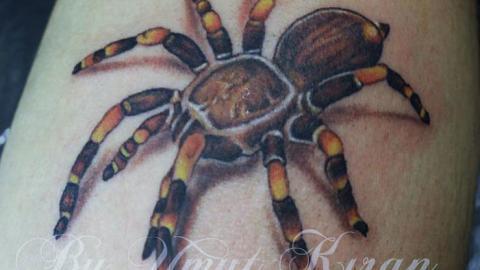 tarantula-tattoo