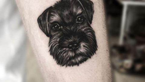Köpek Portre Dövme