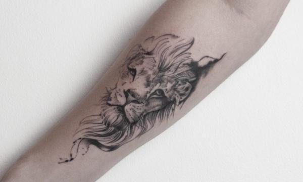 aslan-d